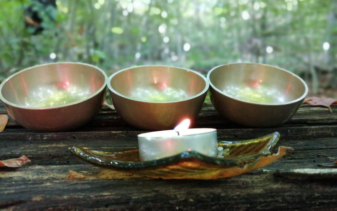 Hangfürdőzés az erdő szentélyében
